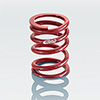 Coil-Over Main Spring 2.25