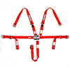 Jr L and L 5Pt Harness Red